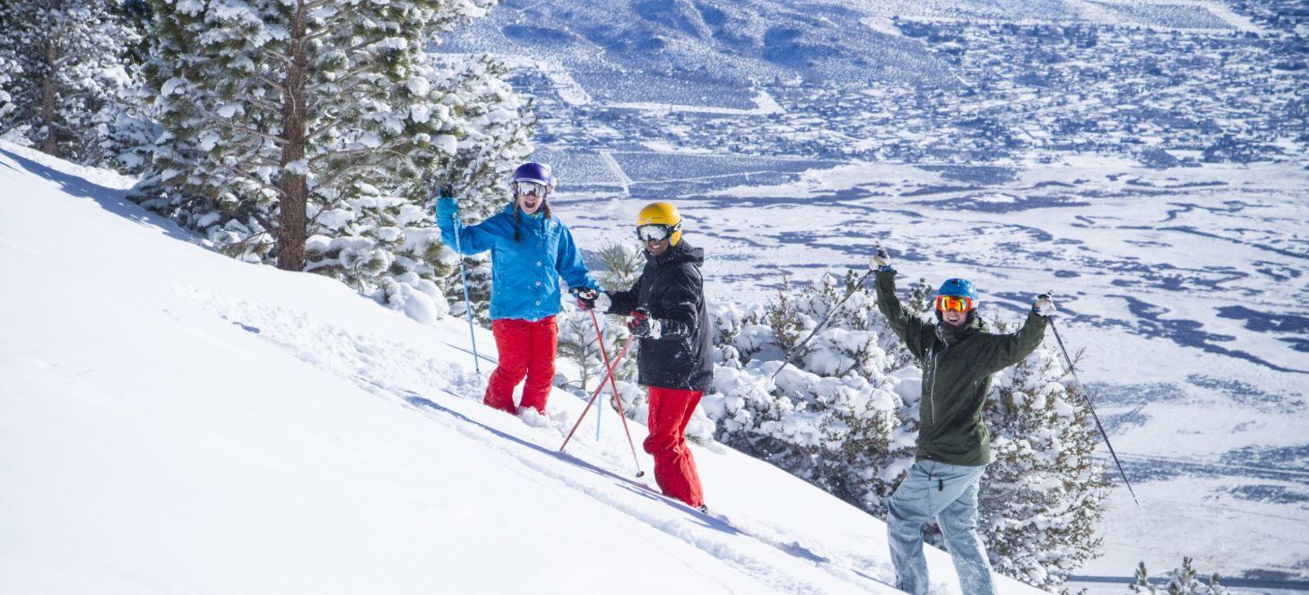 ski/board mount rose